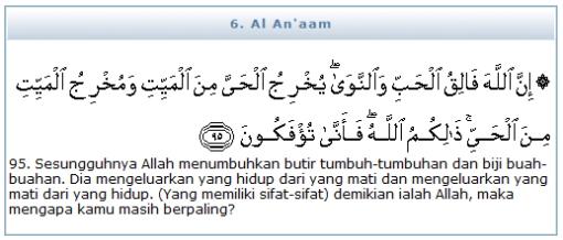 QS (6) Al An'aam 95